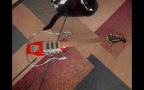 Dynacord Cora electric guitar and Mao the cat
